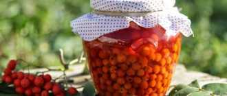 Рябина на зиму: 7 простых заготовок из полезных ягод